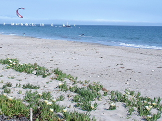 Leadbetter Beach Hike, Santa Barbara