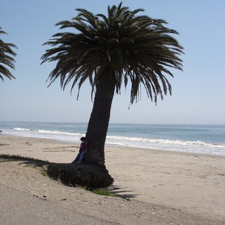 Refugio State Beach, Santa Barbara